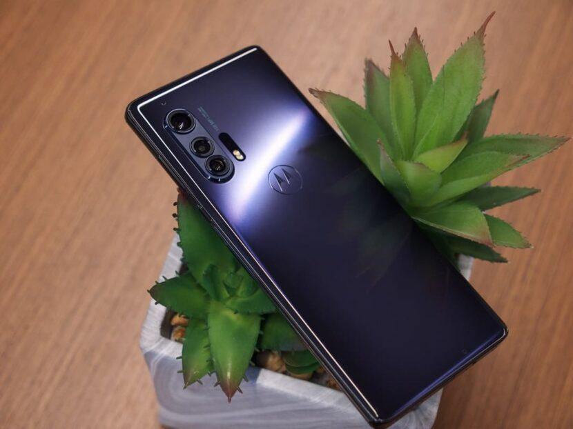 цветок и смартфон