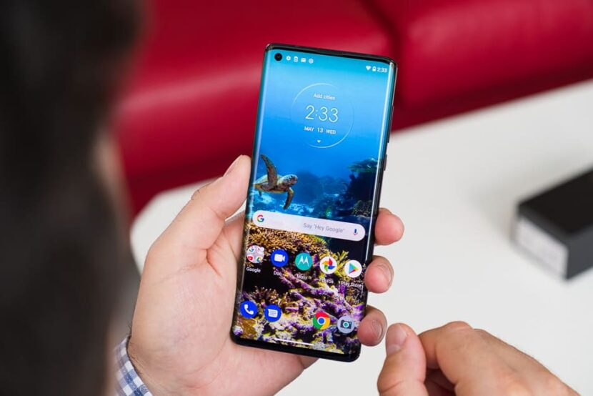 черепашка на фоне смартфона