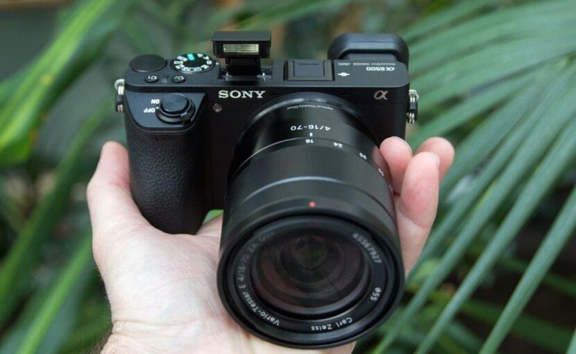 фотоаппарат на фоне зеленых листьев в руке