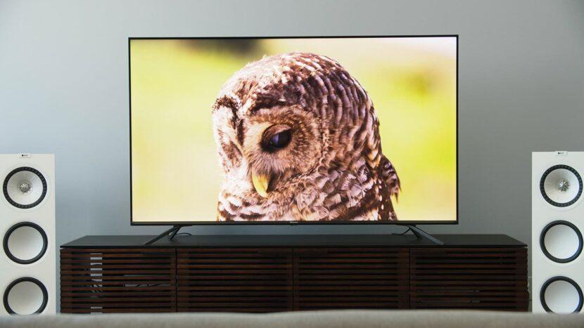 сова на экране телевизора Hisense H8g Quantum