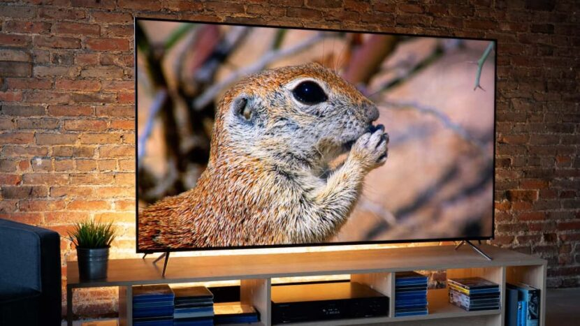 кирпичнаястена позади телевизора Vizio P-Series Quantum X PX65-G1